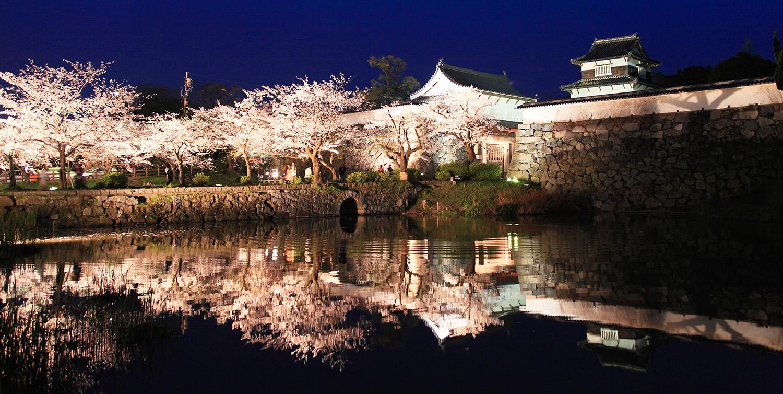 福岡城さくらまつり<br>Fukuoka Castle Cherry Blossom Festival